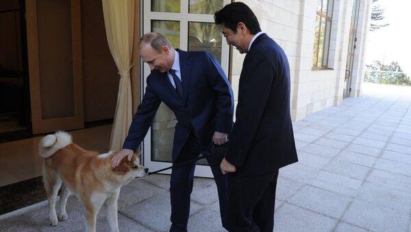 Vladimir Putin, Shinzo Abe, Akita-Inu - Sputnik Việt Nam