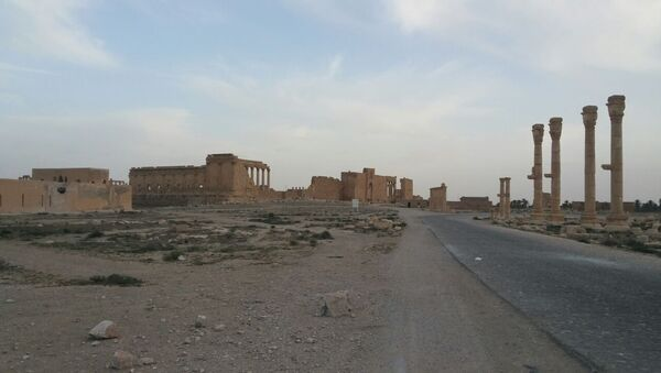 Quân đội Syria chặn cuộc tấn công của chiến binh IS ở gần Palmyra - Sputnik Việt Nam