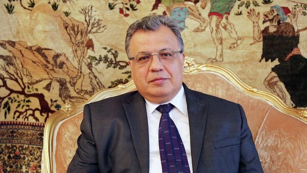 Russian Ambassador to Turkey Andrey Karlov - Sputnik Việt Nam