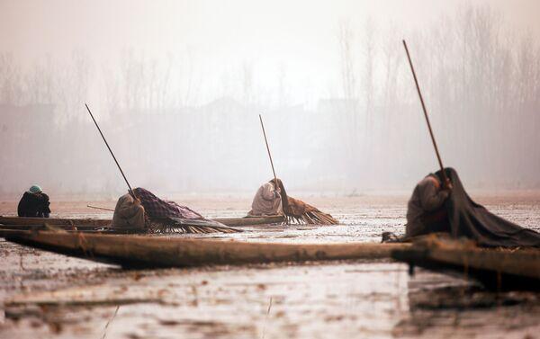 Ngư dân Kashmir đang chờ cá cắn câu bên hồ Manchar ở Srinagar - Sputnik Việt Nam