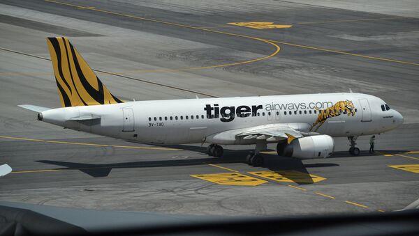 TigerAir - Sputnik Việt Nam