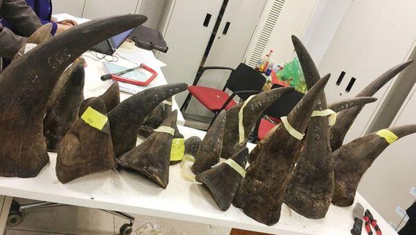Trọng lượng hàng cấm trên hơn 100kg, hiện vẫn chưa rõ đối tượng nhận tại Việt Nam - Sputnik Việt Nam