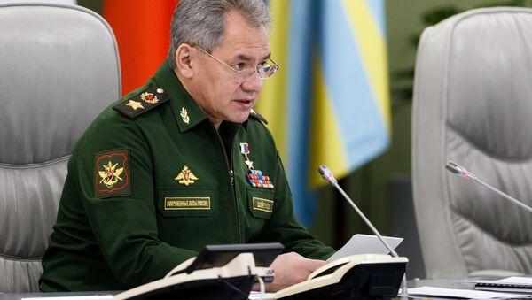 Bộ trưởng Quốc phòng Nga Sergei Shoigu - Sputnik Việt Nam