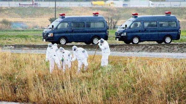 bé gái Việt bị sát hại ở Nhật - Sputnik Việt Nam