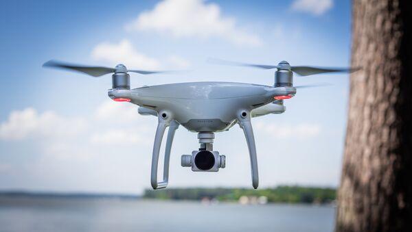 Drone - Sputnik Việt Nam