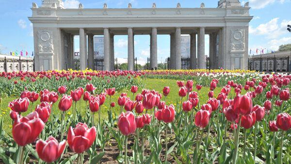 Công viên Gorky ở Mátxcơva - Sputnik Việt Nam