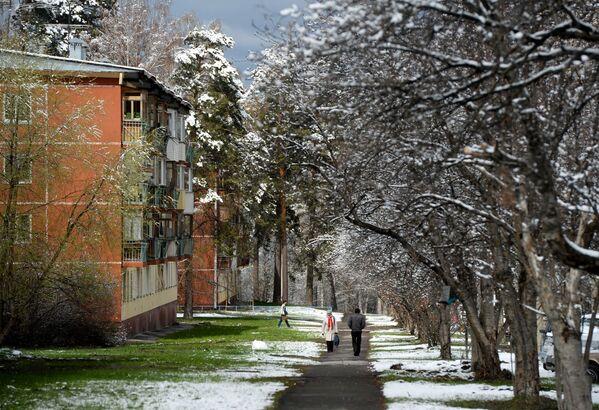 Thị trấn Hàn lâm Akademigorodok Novosibirsk sau trận tuyết rơi. - Sputnik Việt Nam