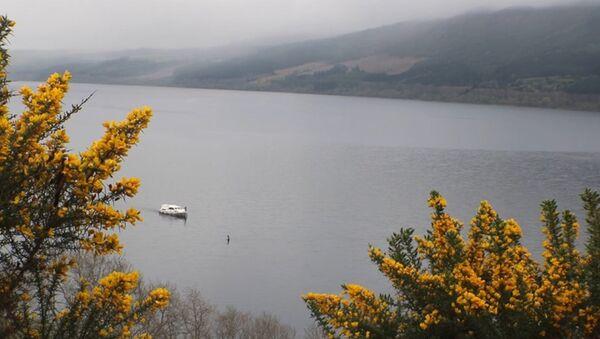 Quái vật lại xuất hiện trên hồ Loch Ness (Video) - Sputnik Việt Nam