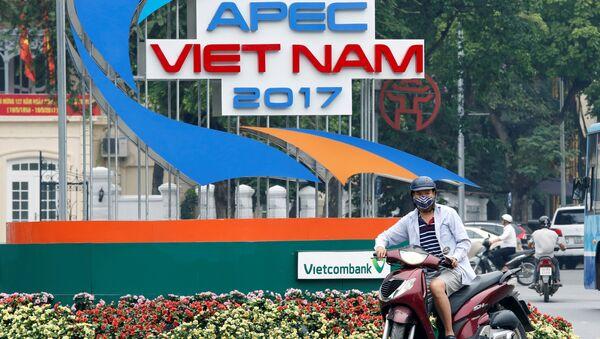 Hội nghị thượng đỉnh APEC sẽ được tổ chức tại Việt Nam vào tháng 11 - Sputnik Việt Nam