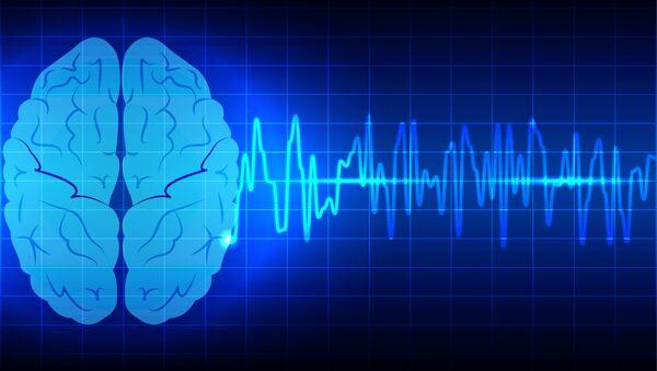 Модель мозга на компьютерном экране - Sputnik Việt Nam