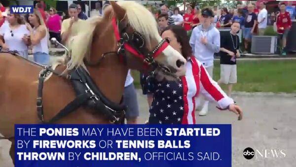 những ngựa Pony chà đạp ba người trong cuộc diễu hành - Sputnik Việt Nam