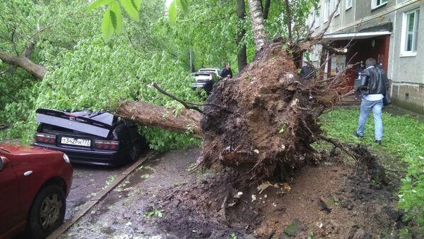 Поваленные ураганом деревья, во дворе жилого дома в Москве - Sputnik Việt Nam