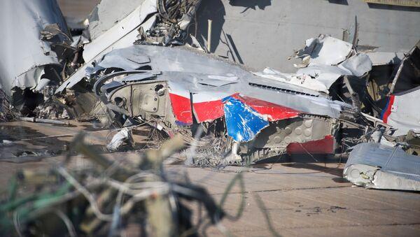 vụ tai nạn máy bay Tu-154 ở Sochi - Sputnik Việt Nam