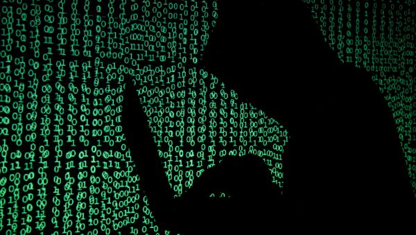 Hacker Nga - Sputnik Việt Nam