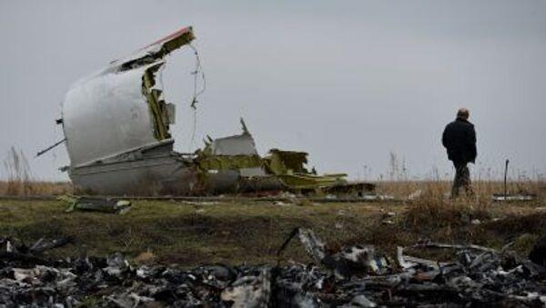 Мужчина у обломков на месте крушения малайзийского самолета Boeing на востоке Украины - Sputnik Việt Nam