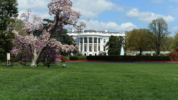 Белый дом в Вашингтоне - Sputnik Việt Nam