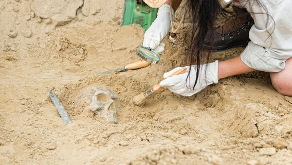 Археолог на раскопках - Sputnik Việt Nam