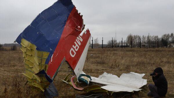 Vị trí tai nạn máy bay Boeing của Hàng không Malaysia ở Đông Ukraine - Sputnik Việt Nam