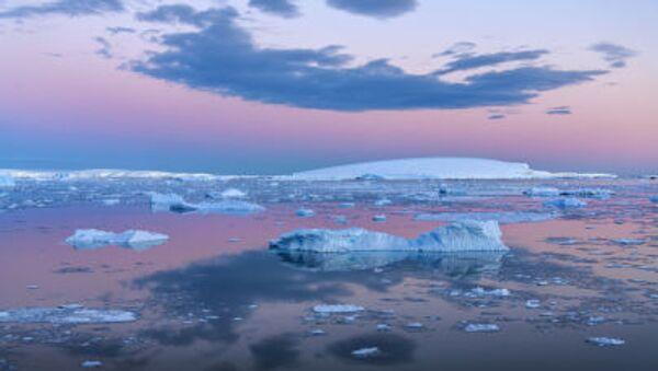 Biển Weddell bên bờ Antarctic - Sputnik Việt Nam