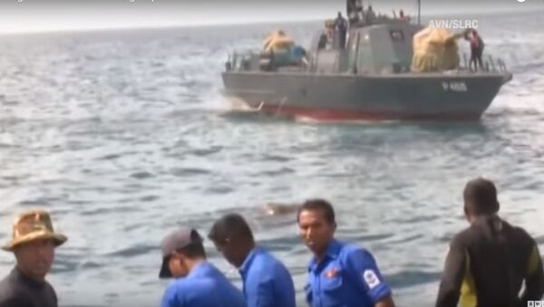 Hải quân Sri Lanka giải cứu con voi bị trôi ra biển - Sputnik Việt Nam
