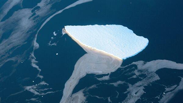 Tảng băng ở Biển Lazarev trên bờ biển Nam Cực - Sputnik Việt Nam