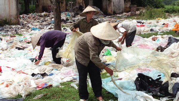Thu thập túi nhựa trong đô thị bán cho nhà máy chế biến nhựa, Việt Nam - Sputnik Việt Nam