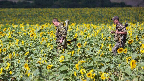 Dân quân Donbass ra vị trí chiến đấu... - Sputnik Việt Nam