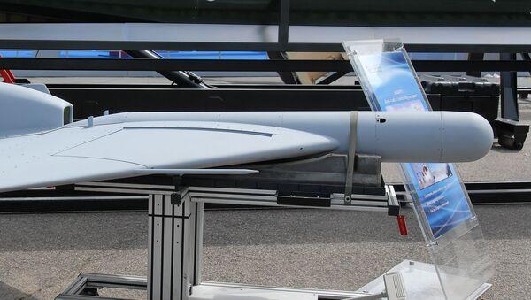 UAV Harpy được trưng bày tại Triển lãm Paris Air Show 2007 - Sputnik Việt Nam