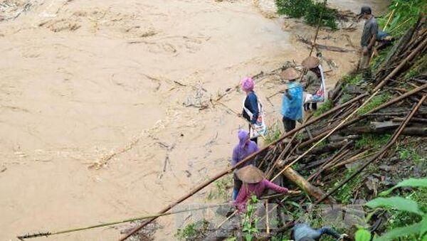 Người dân xã Na Sang, tỉnh Điện Biên mạo hiểm lội xuống suối Nậm Mức để vớt củi. - Sputnik Việt Nam