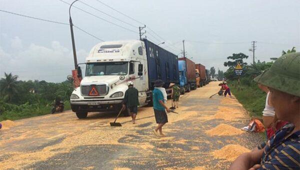Tài xế van xin dân đừng hôi của hàng tấn ngô rơi từ container - Sputnik Việt Nam