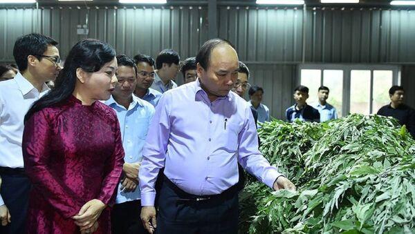 Bộ trưởng Bộ Y tế cùng Thủ Tướng Nguyễn Xuân Phúc - Sputnik Việt Nam
