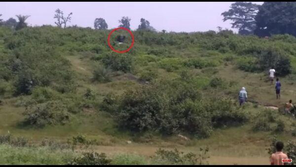 Con voi điên tiết dẫm đạp giết người thích chụp ảnh tự sướng - Sputnik Việt Nam
