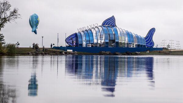Khai mạc triển lãm Phố vùng Viễn Đông trong Diễn đàn Kinh tế Đông-2017 ở Vladivostok - Sputnik Việt Nam