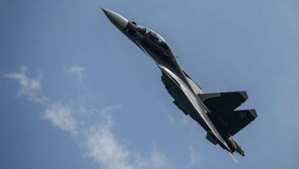 Máy bay chiến đấu Su-30SM - Sputnik Việt Nam