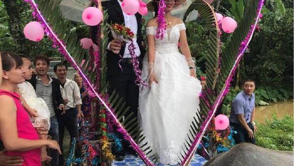 Màn rước dâu của cặp đôi thu hút sự chú ý đối với mọi người - Sputnik Việt Nam