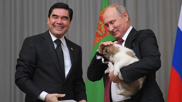 Tổng thống Turkmenistan tặng Tổng thống Putin con chó Alabai - Sputnik Việt Nam