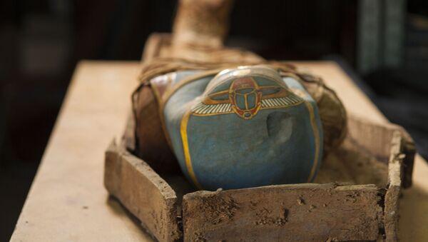 Các nhà khảo cổ  từ Trung tâm Nghiên cứu Ai Cập (Viện Hàn lâm Khoa học LB Nga) và đồng nghiệp địa phương ở Ai Cập đã tìm thấy trong hầm tu viện Deir el-Bana ở phía tây-nam thủ đô Cairo một chiếc quan tài với xác ướp cổ đại.  - Sputnik Việt Nam