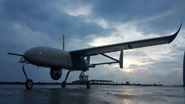 Ấn tượng: Khả năng đặc biệt của UAV Việt Nam - Sputnik Việt Nam