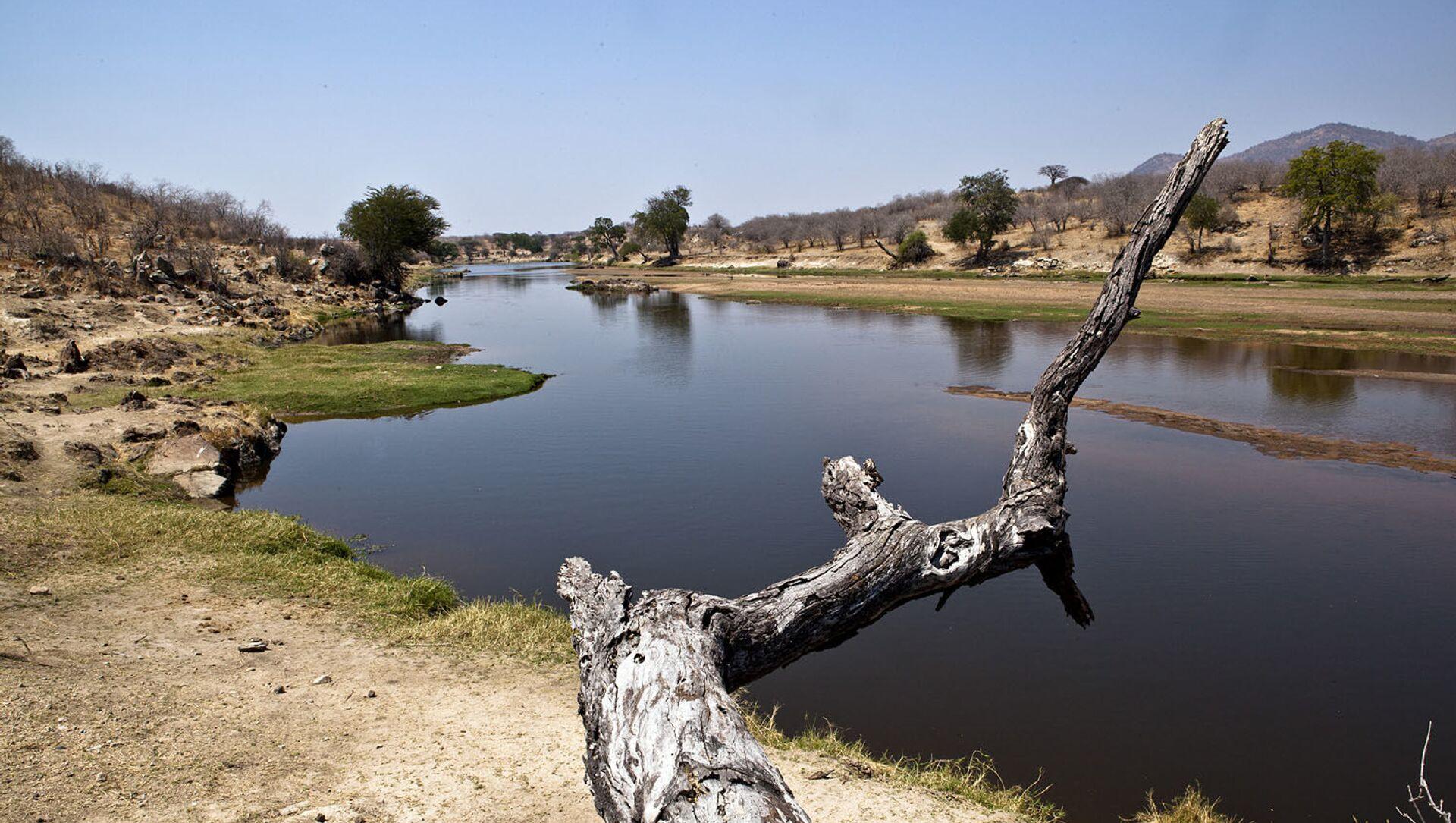 Tanzania. Rungawa là một trong ba công viên quốc gia của đất nước châu Phi này. - Sputnik Việt Nam, 1920, 18.05.2021