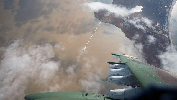 Su-25UB - Sputnik Việt Nam