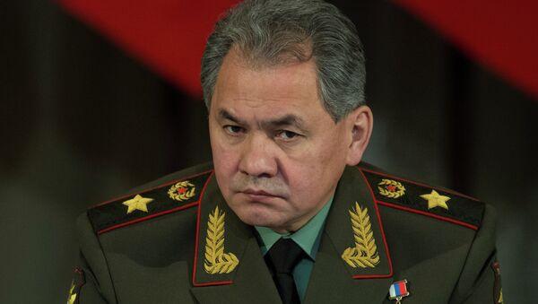Bộ trưởng Quốc phòng Nga, Tướng Sergei Shoigu - Sputnik Việt Nam