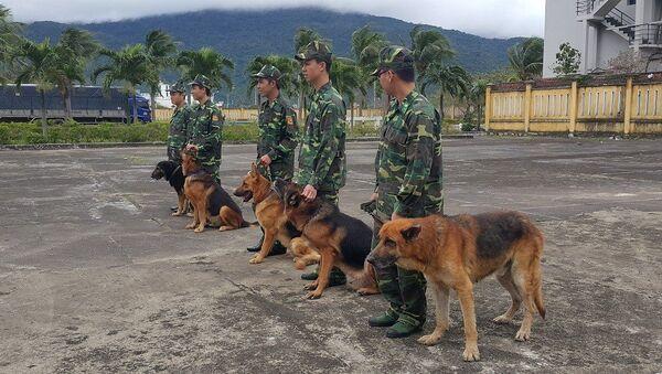 Những chú chó này được xem là vũ khí sống. - Sputnik Việt Nam