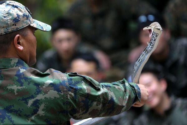 Huấn luyện viên Thái Lan cầm con rắn hổ mang ở bài học sinh tồn trong rừng - một phần của cuộc tập trận chung Cobra Gold 2018 ở Thái Lan - Sputnik Việt Nam