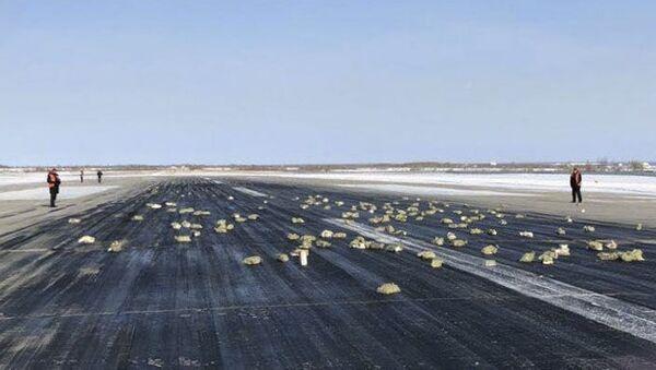 Từ máy bay An-12 ở Yakutsk rơi ra những thỏi kim loại quý - Sputnik Việt Nam