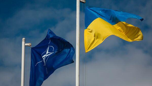 National flag of Ukraine and the NATO flag - Sputnik Việt Nam