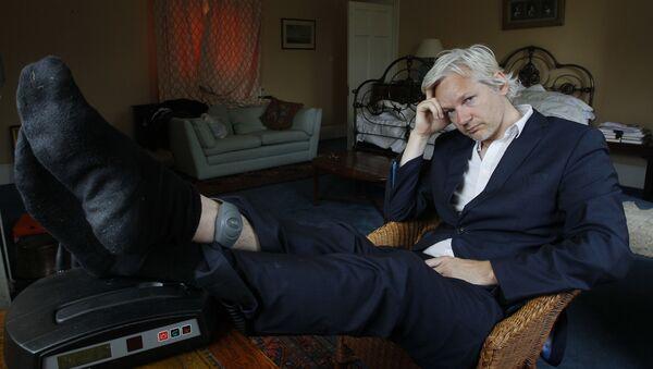 người sáng lập WikiLeaks Julian Assange - Sputnik Việt Nam