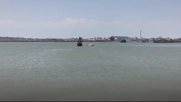 Ngư dân Việt an táng cá voi nặng 2,5 tấn (Video) - Sputnik Việt Nam