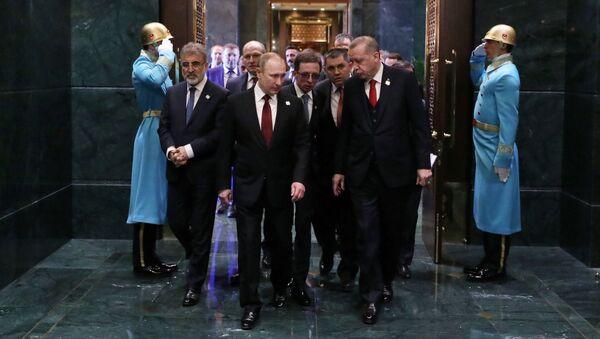 Tổng thống LB Nga Vladimir Putin và Tổng thống Cộng hòa Thổ Nhĩ Kỳ Recep Tayyip Erdogan hội đàm ở Ankara - Sputnik Việt Nam