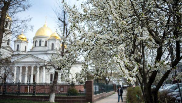Цветущая вишня возле собора Александра Невского в Симферополе, Крым - Sputnik Việt Nam