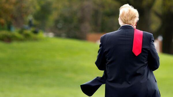 Tổng thống Hoa Kỳ Donald Trump trên bãi cỏ của Nhà Trắng ở Washington - Sputnik Việt Nam